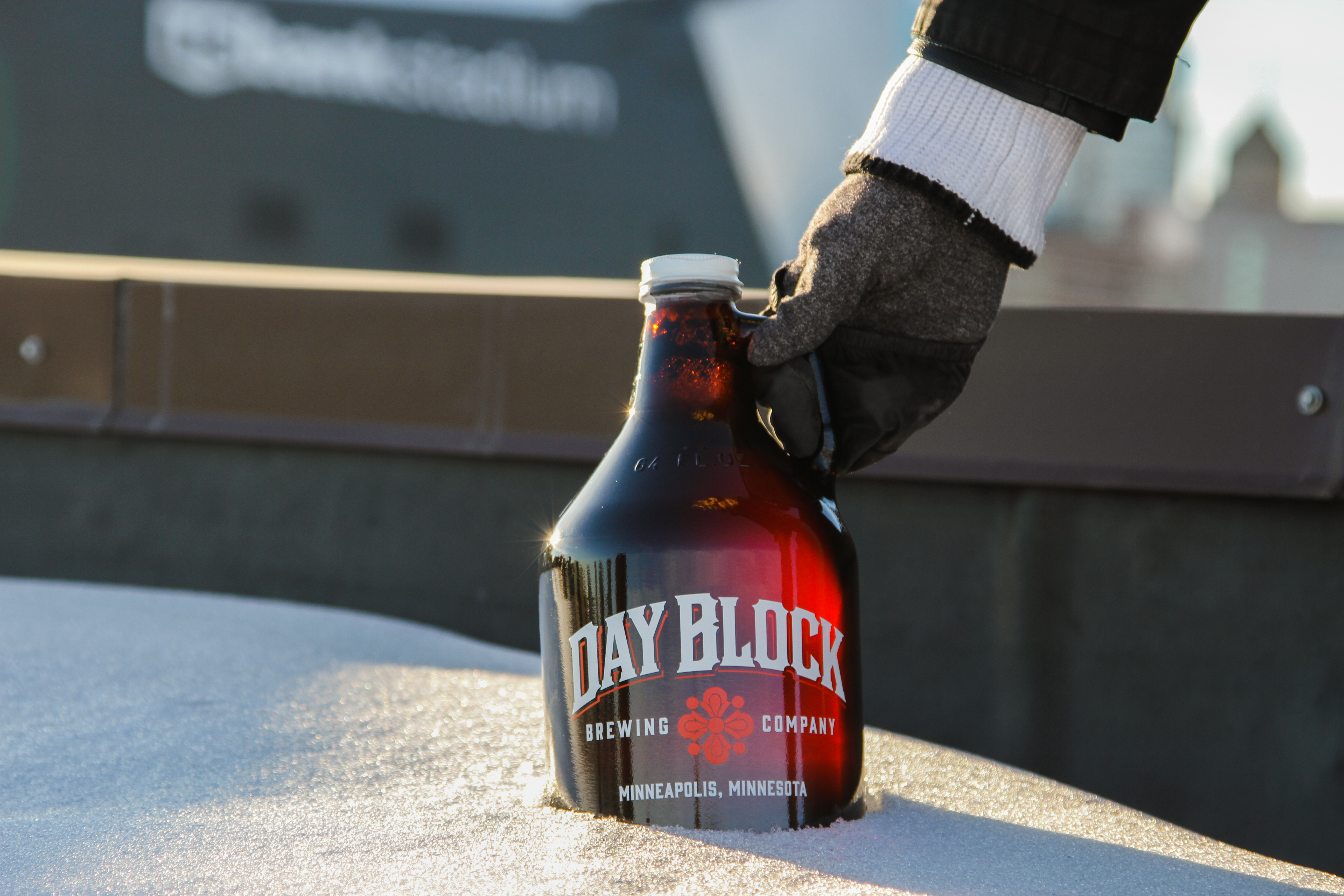 growler on roof in snow